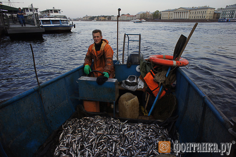 рыбаки санкт-петербурга