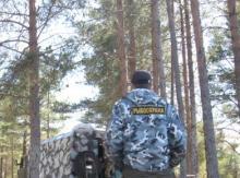 Управление экономической безопасности и противодействия коррупции МВД по Республике Карелия проводит операцию под условным названием «Путина»