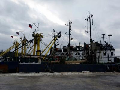 Северо-Западное теруправление Росрыболовства провело осмотр рыболовных судов в порту Усть-Луга