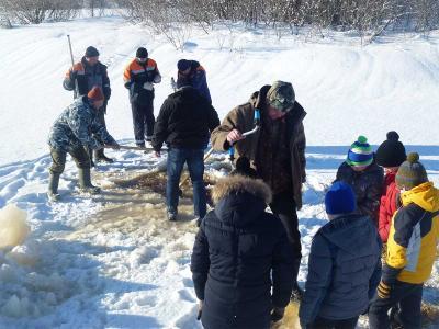 В Вологодской области продолжают спасать рыбу от заморов