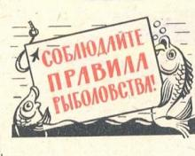 Временный запрет на рыбалку начинает действовать в Карелии