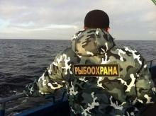 На 53,5 тысяч рублей оштрафовала рыбоохрана браконьеров на псковских водоёмах