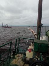 Северо-Западный филиал Главрыбвода начал дноуглубительные работы в устье реки Ловать