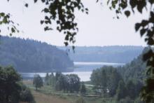 """Суд обязал дочку """"Газпрома"""" выпустить в озеро Валдай 91 159 будущих щук"""