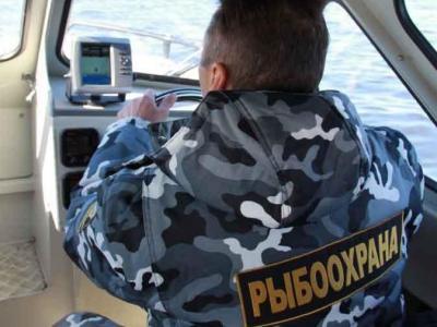 В Новгородской области возбуждено уголовное дело за вылов рыбы  во время нереста