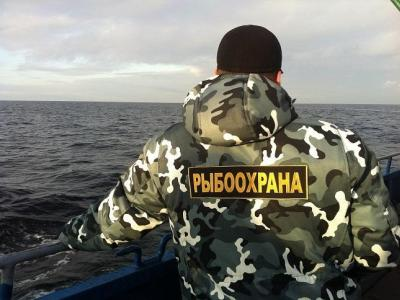 Инспекторами рыбоохраны по Республике Карелия на реке Деревянка изъято 12 бесхозных сетей