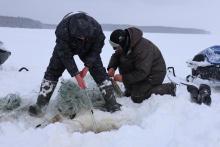Водные объекты рыбохозяйственного значения Вытегорского, Вашкинского и Белозерского районов Вологодской области под контролем рыбоохраны