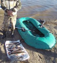 Сотрудники отдела рыбоохраны по Вологодской области в ходе рейда на реке Лежа выявили нарушение правил рыболовства – использование в качестве орудия добычи ставной сети