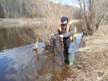Сотрудники рыбоохраны по Республике Коми на реке Ухта изъяли ставные сети