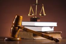 По одному году лишения свободы условно получили граждане из Псковской области за незаконный вылов рыбы