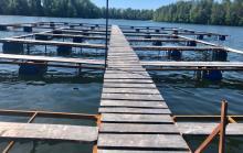 Сотрудниками рыбоохраны по Вологодской области выявлены факты нарушения пользователями рыбоводных участков требования согласования хозяйственной деятельности с органами рыбоохраны