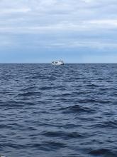 Сотрудники морского отдела Управления напомнили представителям рыбопромысловых компаний о необходимости соблюдения обязательных требований по обеспечению безопасности плавания судов рыбопромыслового флота