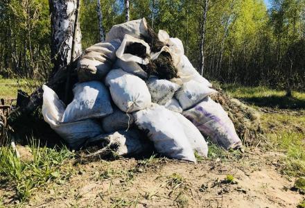 Акция «Всероссийский день без сетей»