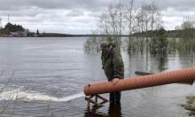 Более 100 тысяч личинок нельмы выпустили в реку Кубену