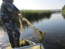 Вологодская область присоединилась к всероссийской акции по очистке рек и озер от сетей браконьеров