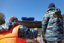 По оценке Росрыболовства, нарушители нанесли ущерб водным биоресурсам почти на 110 тысяч рублей, поймав четыре рыбы.