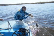 Во время «Всероссийского дня без сетей» в Вологодской области изъято 27 браконьерских сетей