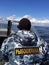 Инспекторы рыбоохраны в Карелии за неделю изъяли у браконьеров 23 незаконных орудия лова