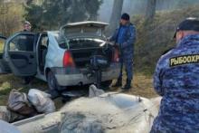 15 нарушений выявила рыбоохрана в Псковской области за неделю