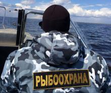 16 орудий лова изъяли у псковских браконьеров за неделю