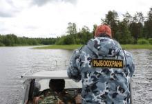 Осенний нерест: на водоёмах Северо-Запада вступают в силу запреты на вылов рыбы