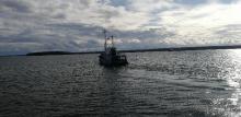 Научная экспедиция в Финском заливе